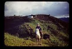 Popi on horse