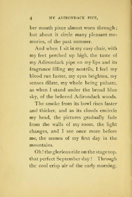 My Adirdondack Pipe Page 2